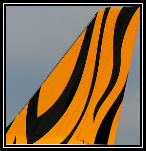 The Tiger Tail <small>Photo: Flicker</small>