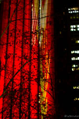 [Vivid Sydney 2011 oictures]